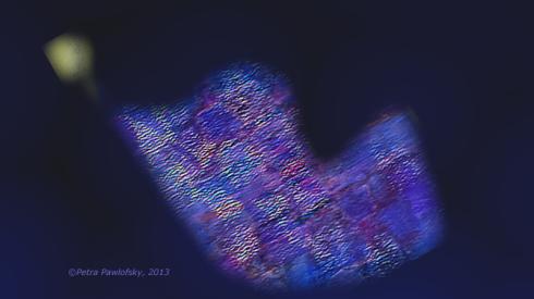 Fliegen, Fallen, Stand 12, 2013webs