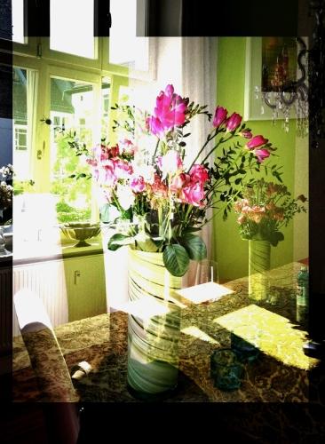 So viele Blumen 2web