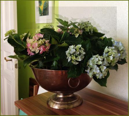 Überall Blumen,R.600
