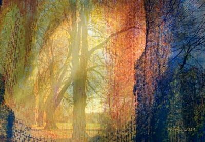Herbststimmung, dig2web600