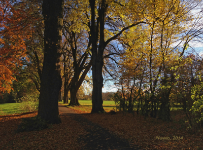 Herbststimmung1, web6002014