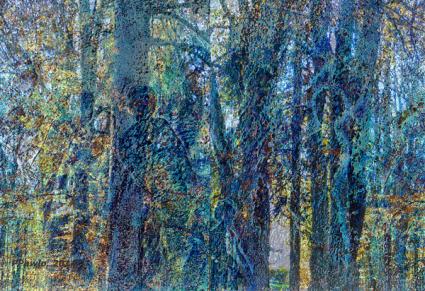Herbstwanderung , 2014