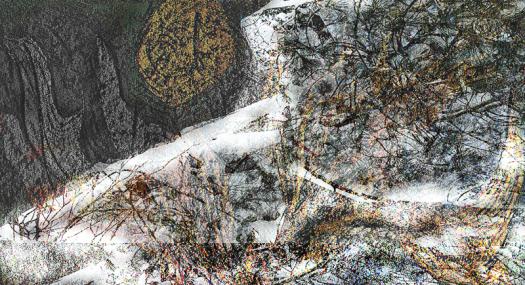Requiem 2 für einen Baum 800s, 2015