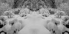 Erneuter Wintereinbruch 1000, 2015