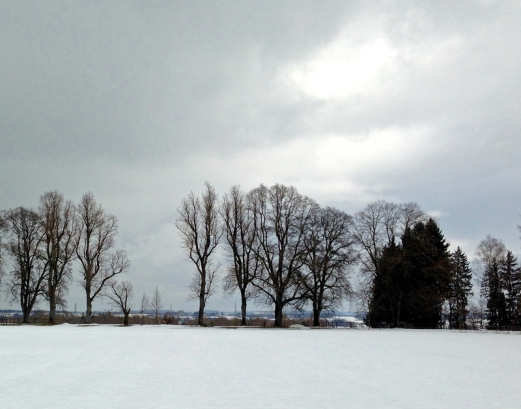 Immer noch Winter 4, 2015