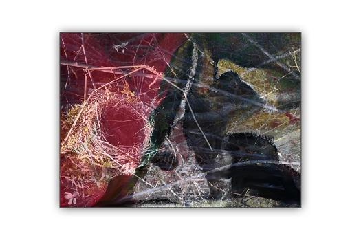 Das Nest 3 web