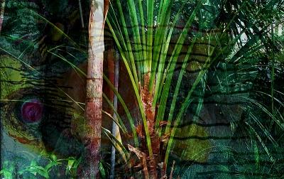 Botanischer Garten D2deweb