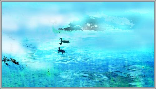 Entenpärchen auf See web 3RS