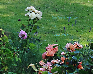 Gartenvernissage 2015