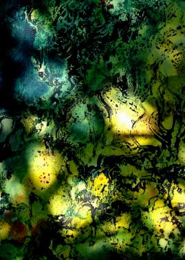Im Gartendschungel 13 web