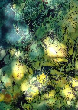 Im Gartendschungel 13web