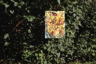 Dschungelig 1 am Fliederbusch web