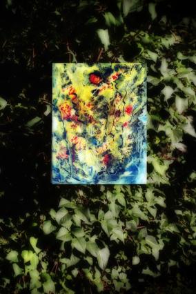 Dschungelig D1 im Fliederbusch web