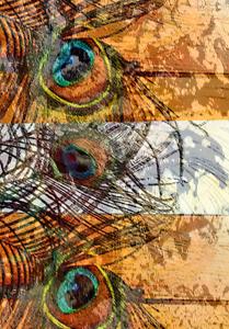 Pfauenschmuck 5 web, 2015