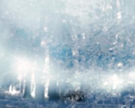 Im Nebel D1, 2015
