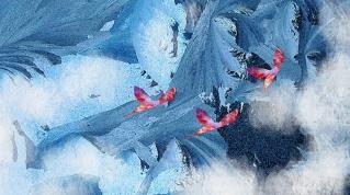 Flug überm Eis, 2016