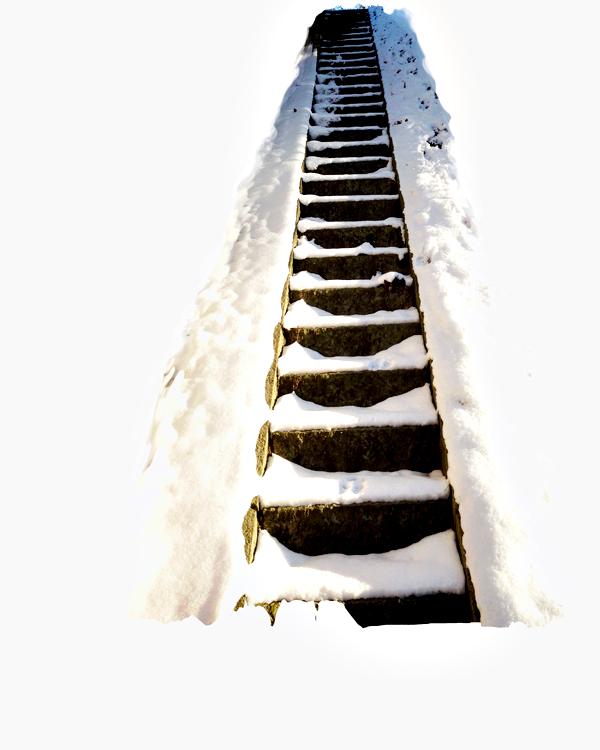 Winterspaziergang 3bc web.jpg
