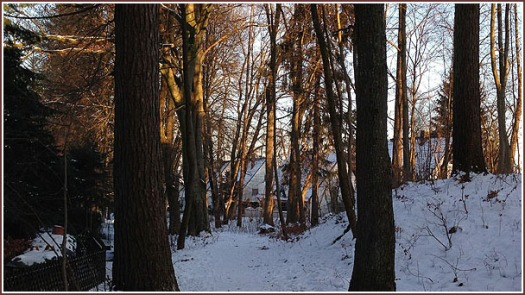 Winterspaziergang 5b, 2016