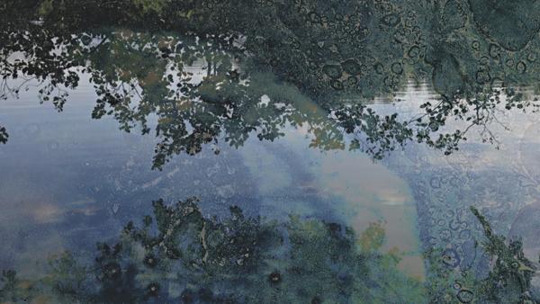 Wasserspiegelungen D1, 2016
