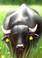 Wo sind die Büffel 2, 2015