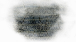 vernetzt-10b 2017