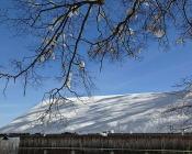 Noch Schnee 4b 2016