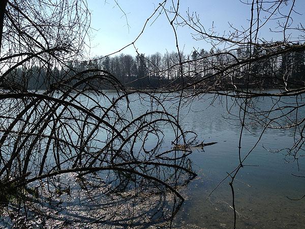 Frühlingsschwung - 3web.jpg.jpg