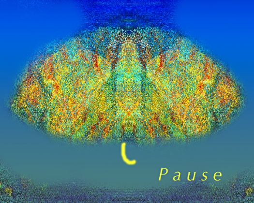 Pause 2017web.jpg