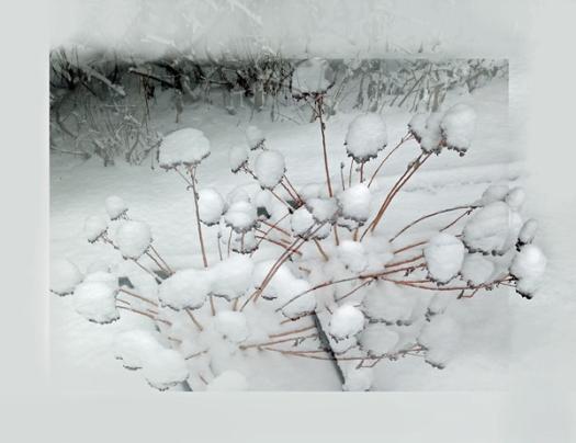 Winterlast 2web