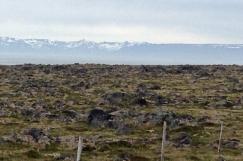 Island Bewegte Erde Juni 201884